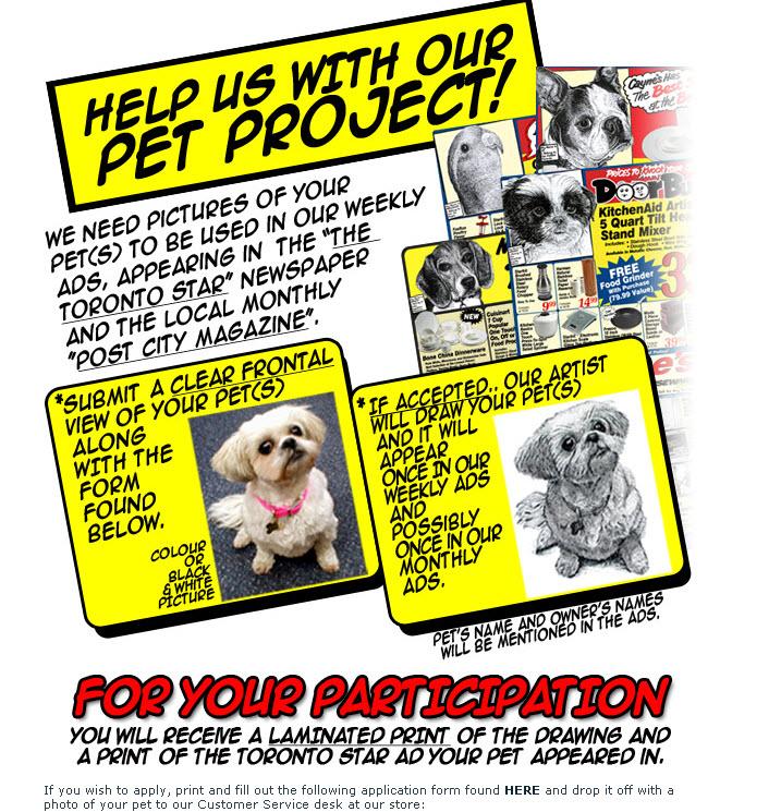 Caynes-pet-project